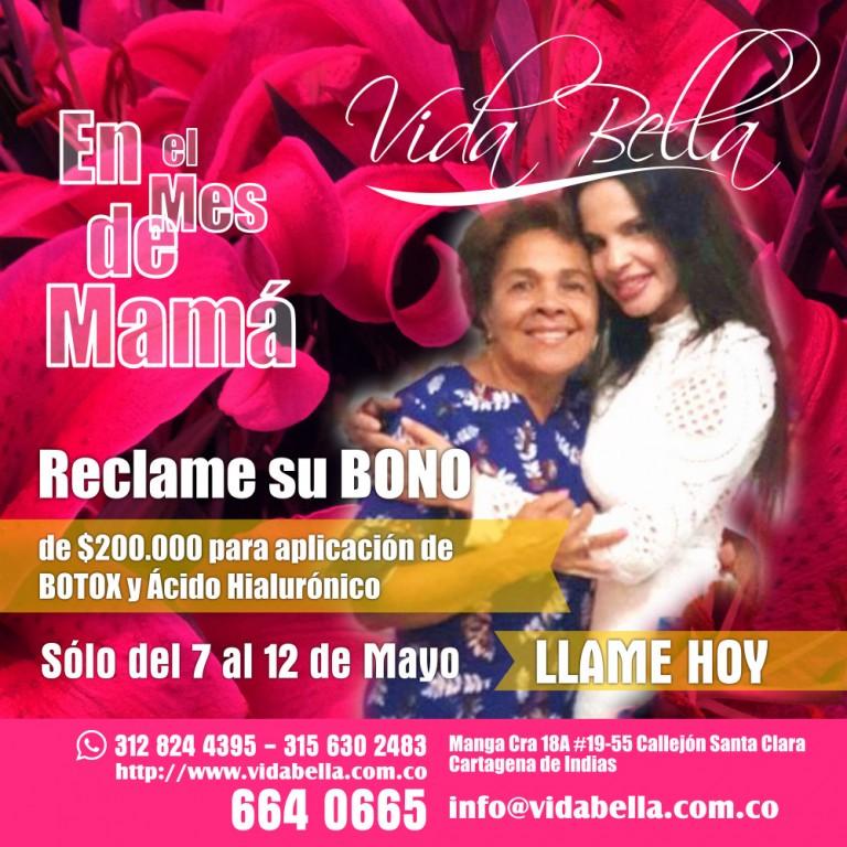 Oferta Especial - Vida Bella